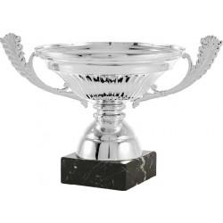Copa Colorado